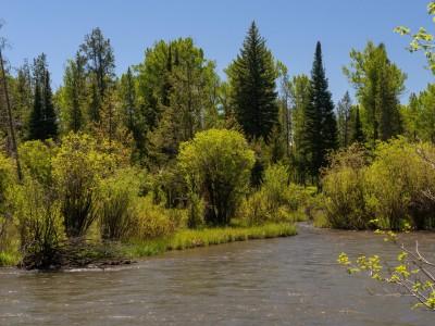 Fish Creek Image