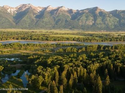 Bugling Elk Trail Tracks Image