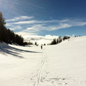 back Country skiing d (1024x1024) (1)