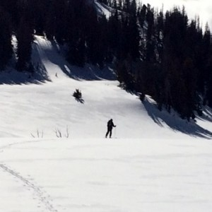 Back Country Skiing e (1024x1024) (1)